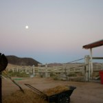 Full moon over the corral as the heat starts to fade.